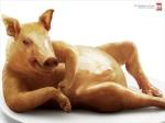 Temptation-From-Pig-o