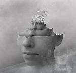 flying-brain